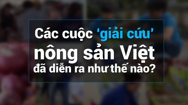 Cac cuoc 'giai cuu' nong san Viet da dien ra nhu the nao? hinh anh