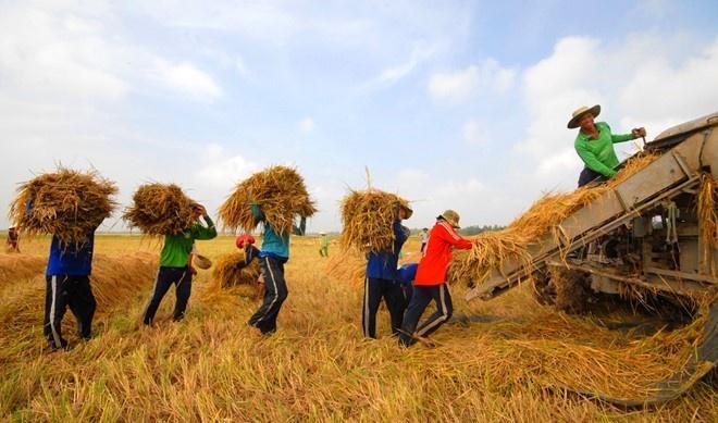 Quoc hoi thong nhat dat chi tieu tang truong GDP 2018 o 6,5-6,7% hinh anh