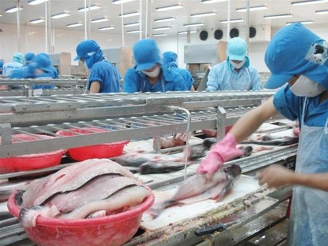Samsung kien nghi Viet Nam khong nen tang chi phi nhan cong qua nhanh hinh anh 2