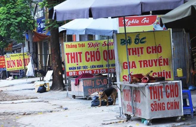 TP.HCM khuyến cáo người dân bỏ thói quen ăn thịt chó
