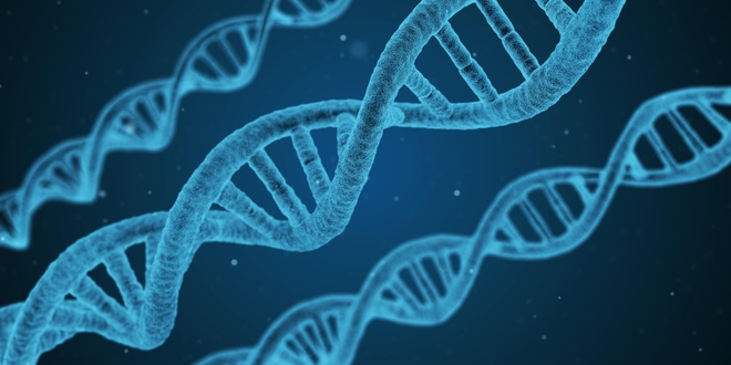 Vu khi sinh hoc ap dung DNA anh 1