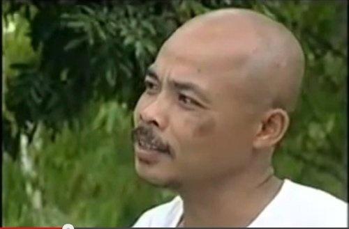 Han Van Tinh va nhung vai phu an tuong tren man anh hinh anh 4