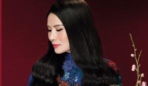 Sao mai Thanh Le ra album ky niem 10 nam ca hat hinh anh