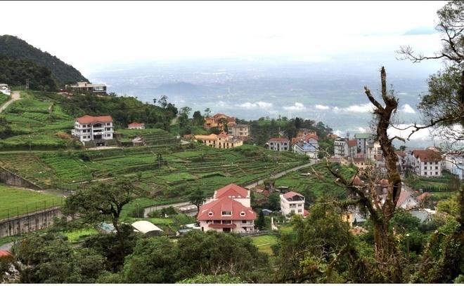 Tam Dao mu suong hinh anh 5 Thời gian này đang là mùa cao điểm du lịch nhưng Tam Đảo vẫn giữ được vẻ yên tĩnh, thanh bình vốn có.