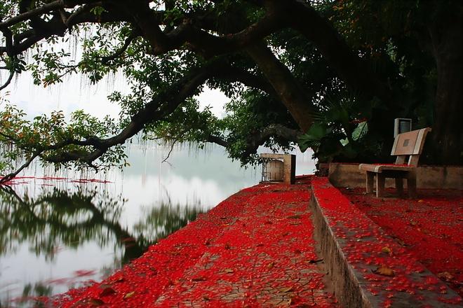 Lac loi voi nhung con duong hoa tuyet dep o Viet Nam hinh anh 22
