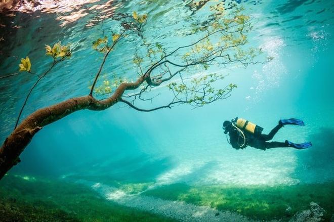 An tuong anh doat giai 'Anh du lich 2014' hinh anh 3 Bức ảnh Thợ lặn ở vương quốc phép thuật của nhiếp ảnh gia Marc Henauer - Ảnh: National Geographic