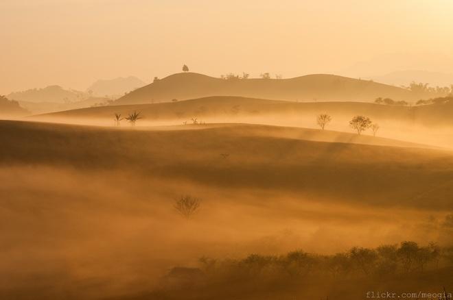 Những ngọn đồi được bao trùm bởi lớp sương trong ánh bình minh trở nên huyền ảo hơn bao giờ hết. Vẻ đẹp ấy khiến cho du khách ngỡ như lạc vào cõi mơ. Ảnh: Mèo Già