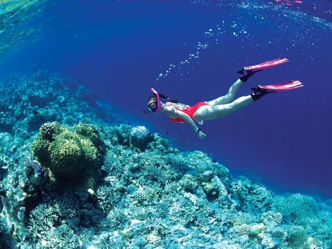 Thu nhung tro choi cam giac manh moi du nhap vao Viet Nam hinh anh 8 Lặn biển là một cuộc khám phá thú vị dưới đáy đại dương.