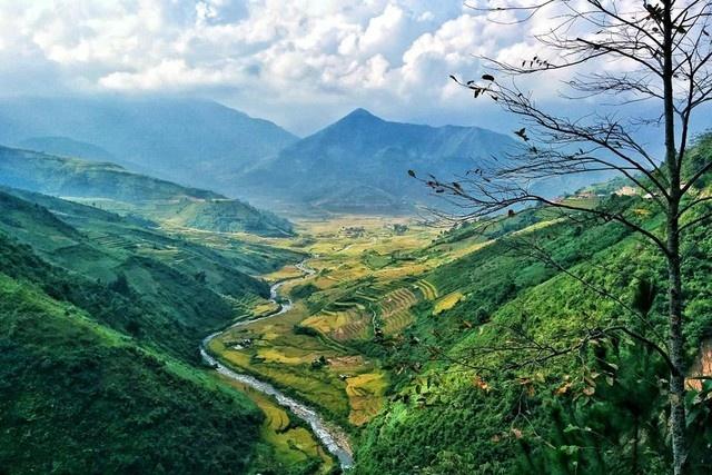 Ngam 'tu dai dinh deo' huyen thoai cua Tay Bac hinh anh 16 Khung cảnh ở đèo Khau Phạ đẹp nhất vào tháng 9, tháng 10, khi những triền ruộng bậc thang của bà con dân tộc Mông chín vàng, rực rỡ một sắc màu. Đây là thời điểm mà dân phượt thường đến nơi này để thưởng ngoạn. (Ảnh: Trang Pear)