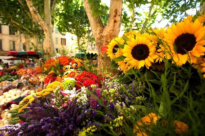10 cho hoa noi tieng nhat the gioi hinh anh 2 Marché Aux Fleurs, Pháp: Khu chợ hơn 200 năm tuổi này tràn ngập lan Nam Phi, hoa nhài và hoa huệ khắp đại sảnh của Belle Époque, trừ ngày Chủ Nhật, khi chợ hoa nhường chỗ cho chợ chim.