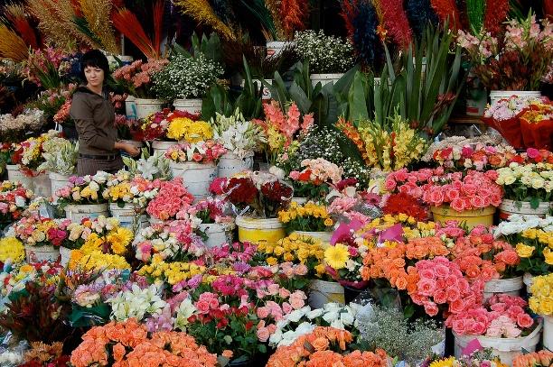 10 cho hoa noi tieng nhat the gioi hinh anh 5 Chợ hoa trên phố Adderley, Nam Phi: Chợ hoa lớn nhất Nam Phi này nổi tiếng với những người phụ nữ bán hàng đáo để. Hãy thưởng thức những loài cẩm chướng, hoa ly và Thảo Đường San Hô, một loại hoa đặc trưng của Nam Phi.