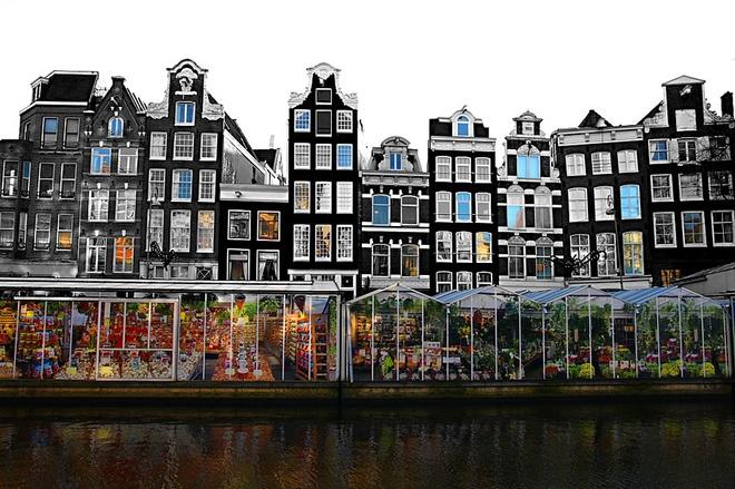 10 cho hoa noi tieng nhat the gioi hinh anh 4 Bloemenmarkt, Hà Lan: Nằm trên kênh đào Singel xinh đẹp, chợ nổi Bloemenmarkt của Amsterdam rực rỡ sắc màu, chủ yếu là hoa Tulip. Các xà lan chở đầy những loại hoa lộng lẫy, nổi tiếng nhất là Nữ Hoàng Đêm, một loại Tulip đen.