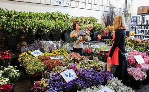 10 cho hoa noi tieng nhat the gioi hinh anh 10 Chợ hoa Flemington, Úc: Một trong những bí mật tuyệt vời nhất của Sydney là chợ hoa tuyệt đẹp diễn ra từ 5h sáng đến khoảng 9h, khi những người mua hoa ra về với chiến lợi phẩm là những bó hoa rực rỡ đủ sắc màu.