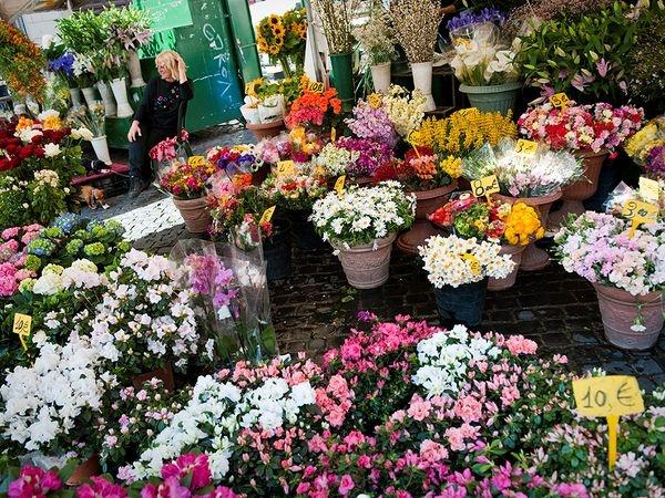 10 cho hoa noi tieng nhat the gioi hinh anh 3 Campo Dei Fiore, Ý: Hình thành từ thế kỉ 15, khu chợ hoa nhỏ nhắn này có một vị trí đặc biệt trong trái tim người dân thành Rome. Sáng sớm, những người nông dân chở hoa vào thành phố. Các hàng hoa đóng cửa rất muộn, khoảng 1h sáng, lúc đó bạn sẽ dễ dàng được khuyến mại thêm một vài bông.