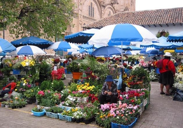 10 cho hoa noi tieng nhat the gioi hinh anh 1 Chợ hoa Cuenca, Ecuador: Là một trong những thành phố có lịch sử lâu đời nhất thế giới, Cuenca có hơn 50 nhà thờ được xây dựng từ thời Tây Ban Nha chiếm đóng. Nhưng điểm hút khách nhất thành phố lại là chợ hoa được mở hàng ngày dưới chân thánh đường Inmaculada Concepción. Hàng chục gian hàng bày bán các loại phong lan sặc sỡ, hoa ly và những bông hồng khổng lồ.