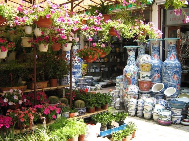 10 cho hoa noi tieng nhat the gioi hinh anh 8 Caojiadu, Trung Quốc: Bạn sẽ thấy một cổng vòm đầy dây leo dẫn vào chợ Caojiadu, chợ hoa lớn nhất Thượng Hải. Khắp 3 tầng chợ tràn ngập đủ loại cây và hoa giá rẻ. Ngoài ra ở đây còn bán chim, cá, rùa cảnh và hòn non bộ.