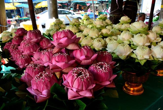 10 cho hoa noi tieng nhat the gioi hinh anh 7 Pak Khlong Talat, Thái Lan: Chợ hoa Pak Khlong là một trong những địa điểm hấp dẫn và thú vị nhất Bangkok. Tuy chợ hoa mở suốt cả ngày, nhưng tốt nhất là bạn nên tới đây vào buổi tối, khi không khí mát mẻ hơn và những con tàu trên sông Chao Phraya chở sen trắng và hồng tới.