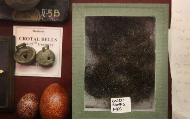 Bao tang chuyen suu tap nhung thu dang so, khac thuong hinh anh 11 Một mớ lông được cho là của Russell Brand.