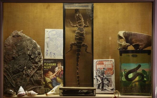 Bao tang chuyen suu tap nhung thu dang so, khac thuong hinh anh 12 Các món đồ trong bảo tàng được bố trí lẫn lộn.