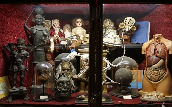 Bao tang chuyen suu tap nhung thu dang so, khac thuong hinh anh 3 Bảo tàng còn giới thiệu những món đồ có phần quái dị như đồ chơi tình dục thời cổ đại, trẻ sơ sinh thế kỷ 19.