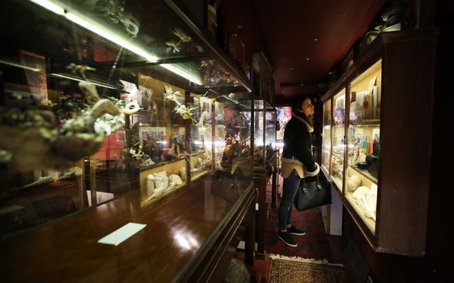 Bao tang chuyen suu tap nhung thu dang so, khac thuong hinh anh 4 Du khách rất tò mò khi thấy những món đồ kỳ lạ.