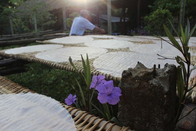 Viet Nam, noi dau cung la nha hinh anh 6 Những bánh hủ tiếu vừa ra lò sẽ được tắm những tia nắng sớm.