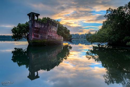 """Con tàu khổng lồ SS Ayrfield nằm ở vịnh Homebush, Australia là một phế tích còn lại sau Chiến tranh thế giới thứ II. Mặc dù không còn được sử dụng mà bị bỏ mặc lênh đênh trên vịnh, nhưng hiện nay, con tàu này lại là điểm thu hút du khách tới chụp ảnh. Những cây cỏ mọc đầy trên tàu """"biến"""" nó thành một khu rừng nhỏ di động, mang sắc màu ám ảnh."""