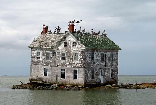 Ngôi nhà này là phần duy nhất còn sót lại của hòn đảo thuộc địa mang tên Holland, từng phát triển khá thịnh vượng trong lịch sử, nằm ở vịnh Chesapeake, tại Mỹ. Theo thời gian bị bỏ mặc nhiều, vùng đất đã bị bùn và phù sa bên biển xói mòn nhanh chóng, khiến diện tích đảo ngày càng bị thu hẹp, nước ngập lên nhiều hơn. Ngôi nhà là nơi sinh sống của người dân cuối cùng trên đảo, trước khi nó sụp đổ vào năm 2010.