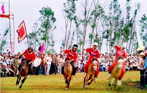 Nhung le hoi Xuan khong the bo qua dip Tet Nguyen dan hinh anh 10 Hội đua ngựa Gò Thì Thùng, Phú Yên Lễ hội được tổ chức vào mùng 9 tháng Giêng, tại Gò Thì Thùng, xã An Xuân, huyện Tuy An. Mặc dù tham gia đường đua là những chú ngựa hàng ngày thồ hàng và kỵ sĩ là những người nông dân chân chất, nhưng vào ngày hội, du khách sẽ được chứng kiến những màn phi nước đại trong tiếng reo hò cổ vũ của hàng nghìn người xem. Ngoài phần đua, lễ hội còn có các trò chơi dân gian sôi động.