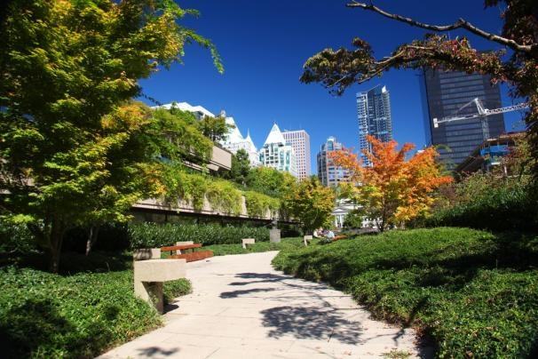10 noi ngam hoa anh dao dep nhat the gioi hinh anh 3 2. Lễ hội hoa anh đào tại Vancouver, Canada. Đây là một lễ hội thường niên đánh dấu sự khởi đầu mùa xuân, và cũng để chiêm ngưỡng vẻ đẹp của những bông hoa.