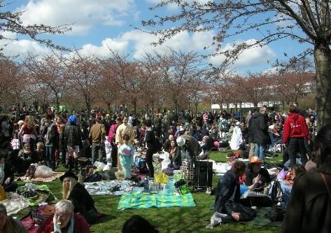 10 noi ngam hoa anh dao dep nhat the gioi hinh anh 12 Lễ hội kéo dài trong 2 ngày diễn ra tại công viên Langelinie, công viên nổi tiếng với những bức tượng nàng tiên cá. Do những cây hoa anh đào còn nhỏ, nên những bông hoa sẽ đẹp hơn và nhiều hơn theo từng năm tại đây. Năm nay lễ hội sẽ diễn ra vào ngày 25 đến 26 tháng 4.