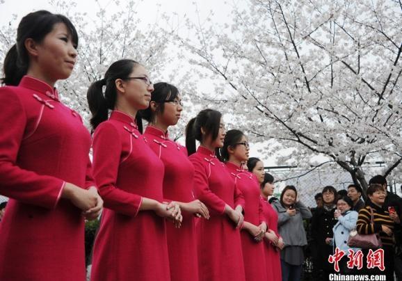10 noi ngam hoa anh dao dep nhat the gioi hinh anh 17 9. Lễ hội hoa anh đào tại Thượng Hải, Trung Quốc. Tại khu đô thị ốc đảo Thượng Hải ở công viên Gucun với diện tích 180 ha là nơi trồng tới 10.000 cây hoa anh đào. Đây là nơi tuyệt vời để nghỉ ngơi thư giãn sau chuyến thăm thành phố mệt mỏi, và tận hưởng hương vị trong lành của mùa xuân.