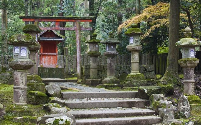 18 trai nghiem lam nen chuyen du lich Nhat Ban dung nghia hinh anh 5 5. Khám phá vẻ đẹp của Nara  Là thủ đô đầu tiên của đất nước mặt trời mọc, Nara luôn nằm trong những lộ trình tham quan được du khách yêu thích nhất khi đến Nhật. Với hơn 1.500 chú nai sinh sống, công viên Nara là điểm đến được du khách yêu thích nhất khi đến đây. Bên cạnh đó, cổng thần đạo Kasuga với những cây cột đỏ, tường trắng, mái cong và hơn 1.000 chiếc đèn lồng treo quanh các mái hiên cũng là điểm tham quan được du khách vô cùng ưa thích.