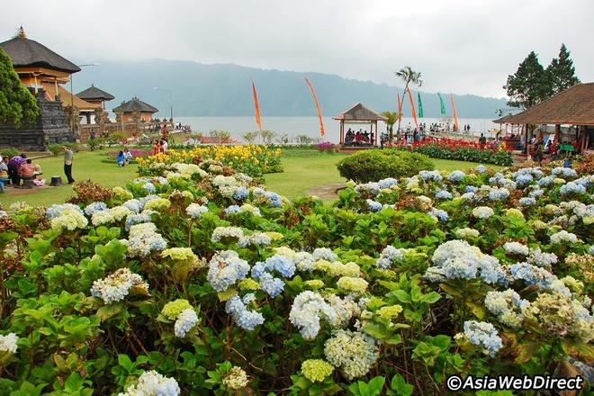 5 ngoi den an tuong can kham pha trong chuyen du lich Bali hinh anh 11 Rất nhiều loài hoa đẹp được trồng xung quanh khu vực đền.