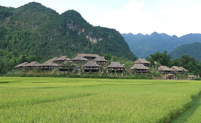 Nhung khu nghi duong sang trong giua nui rung cua Viet Nam hinh anh 11 Mai Châu Ecolodge Resort, Mai Châu Hòa Bình. Đây là một khu nghỉ dưỡng sang trọng được bao quanh bởi nhiều ngọn núi hùng vĩ tuyệt đẹp của Mai Châu, đan xen là những đồng lúa xanh miên man.
