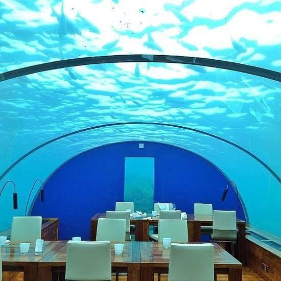 Nhung trai nghiem du lich ban nen thu mot lan trong doi hinh anh 6 Ăn trong khách sạn dưới nước ở Maldives. Ảnh: Popsugar.