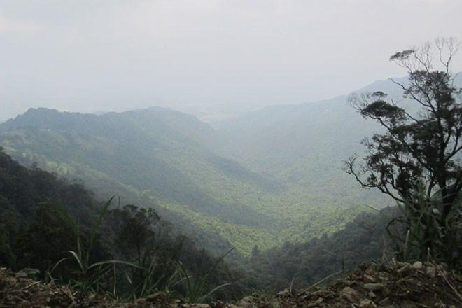 Tam Đảo quyện mình trong mây. Nếu là sớm mai thì nhiều người sẽ tưởng là sương mù. Nhưng không, bức màn mờ ảo bao phủ rộng khắp núi rừng Tam Đảo chính là mây giữa buổi trưa.