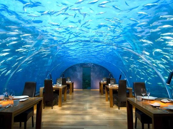 1.Nhà hàng dưới đáy biển (Ithaa Undersea, đảo Rangali, Maldives): Nằm sâu 5m dưới mặt nước biển ở Ấn Độ Dương, nhà hàng với bề mặt bằng kính trong suốt này có giá lên tới <abbr class=