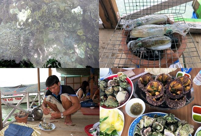 Bua tiec bai bien tan huong binh yen Quy Nhon hinh anh 2 San hô nhìn rõ nhờ làn nước trong vắt (ảnh trên, bên trái) và các món ăn đặc sản biển Quy Nhơn, được dân địa phương phục vụ tận bàn