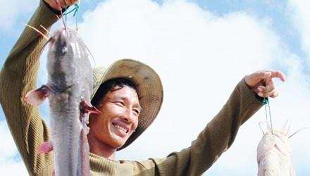 Ve Ca Mau ngu nha khong cua hinh anh 1 Bắt cá ngát ở bãi bồi Mũi Cà Mau.