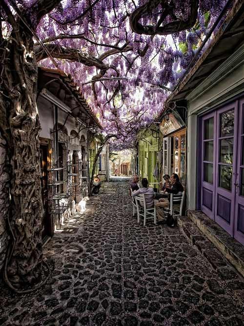 Nhung cung duong dep nhu tranh ve hinh anh 1 Con đường phủ đầy hoa tím ở Molyvos, Lesvos, Hy Lạp. Molyvos là một ngôi làng du lịch thuộc đảo Lesvos, Hy Lạp. Ngôi làng ven biển lãng mạn này được rất nhiều cặp tình nhân lựa chọn để đi hưởng tuần trăng mật.