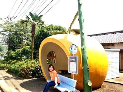 Tram cho xe bus hinh trai cay dang yeu tai Nhat Ban hinh anh 5