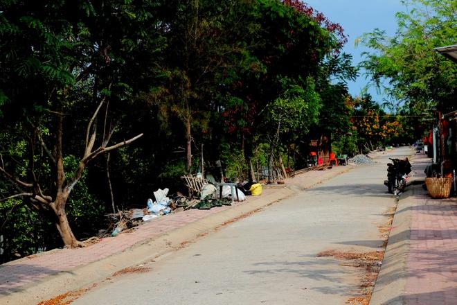 Ve xa dao Thieng Lieng ngay cuoi tuan hinh anh 1 Đường dẫn tới xã đảo Thiềng Liềng.