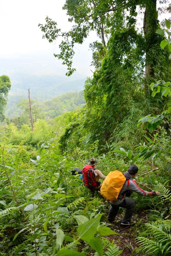 Nguoi Viet chinh phuc noc nha Campuchia hinh anh 15 Thời gian leo xuống theo đường cũ chỉ mất 6 tiếng đồng hồ, chưa tính thời gian dừng nghỉ và dọn đồ tại trại 1,100m, vì đi xuống không mất nhiều sức như khi đi ngược lên.