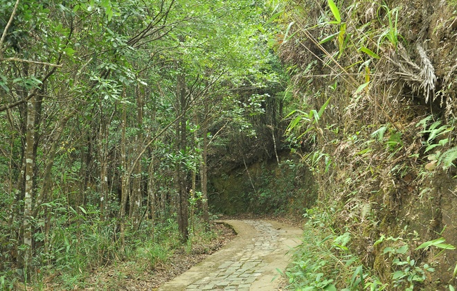 Lac vao coi tien tren dinh Bach Ma hinh anh 11 Con đường lát đá rêu phong lên đỉnh Bạch Mã.