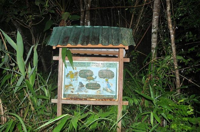 Lam gi de Phu Yen khong thanh 'thien duong rac'? hinh anh 3 Những tấm biển báo không xả rác đầy ý nghĩa trong Vườn quốc gia Bạch Mã.