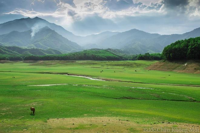 Ho nuoc can nhu 'thao nguyen Mong Co' o Da Nang hinh anh 1 Vào mùa nước cạn, lòng hồ Hòa Trung trở thành nơi cắm trại hay tổ chức những buổi dã ngoại lý tưởng với thảm cỏ xanh mướt trải dài như thảo nguyên.