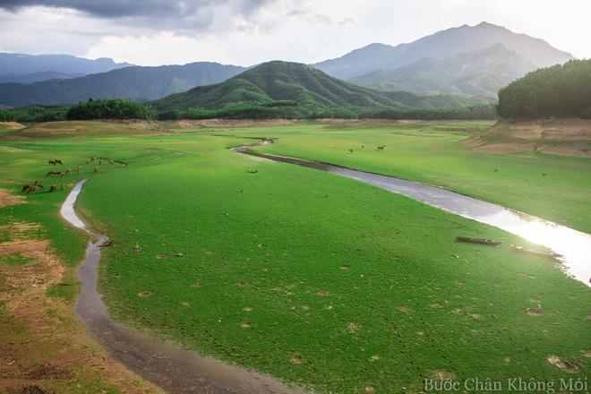 Ho nuoc can nhu 'thao nguyen Mong Co' o Da Nang hinh anh 3 Đà Nẵng là thành phố có núi, sông, đồng bằng và biển nên rất dễ để kiếm được một chỗ cắm trại nhưng hồ Hòa Trung vẫn là nơi tuyệt vời với đồng cỏ rộng mênh mông được bao quanh bở núi rừng hùng vĩ.