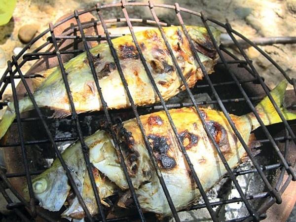 Nhung mon an ngon tru danh xu Nghe hinh anh 10 Cá giò: Nếu rời Cửa Lò mà chưa thưởng thức món ăn chế biến từ cá giò thì xem như bạn chưa thực sự đến xứ biển này. Cá giò là đặc sản