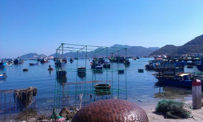Kham pha ve dep cua dao Binh Ba hinh anh 6 Nơi ngư dân nuôi trồng thuỷ sản , đặc biệt là tôm hùm.